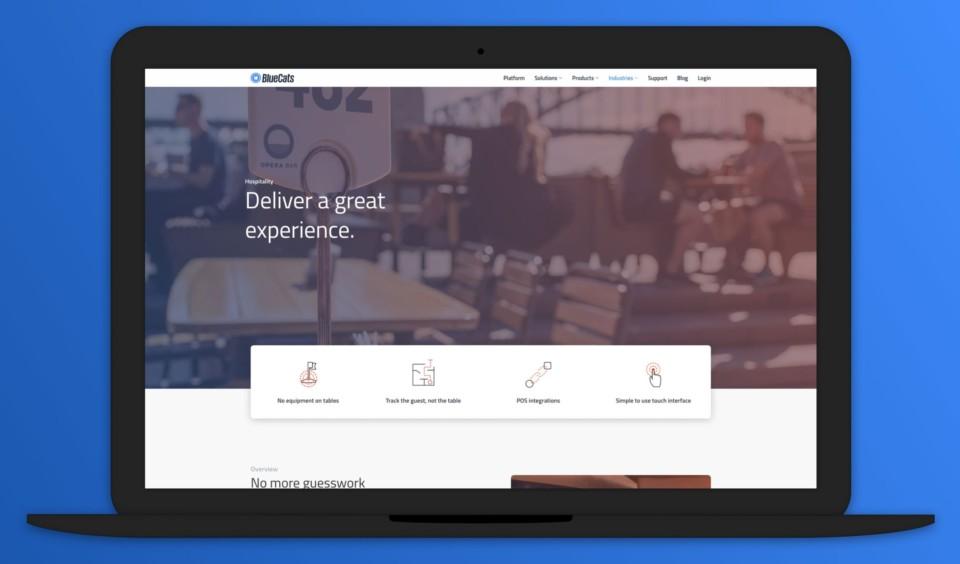 BlueCats.com Redesign